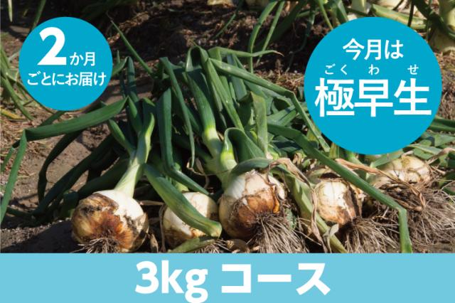 【島の玉ねぎ定期便】3kgコース:2ヵ月に1回お届け