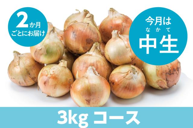 【島の玉ねぎ定期便】食べきりコース(3kg~4kg):2ヵ月に1回お届け