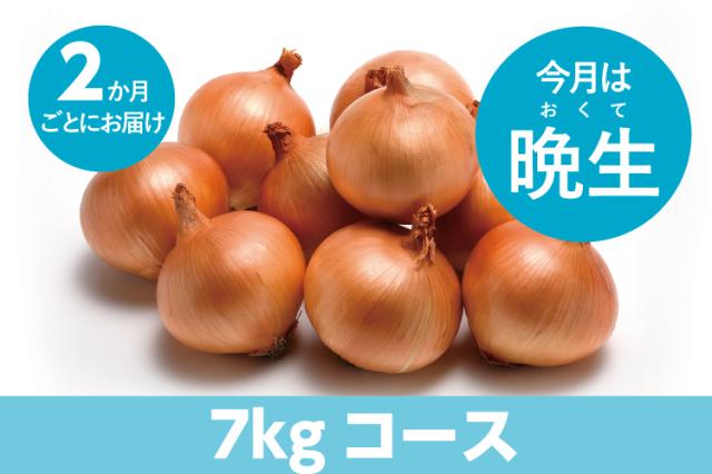 【島の玉ねぎ定期便】たっぷりコース(7kg~8kg):2ヵ月に1回お届け