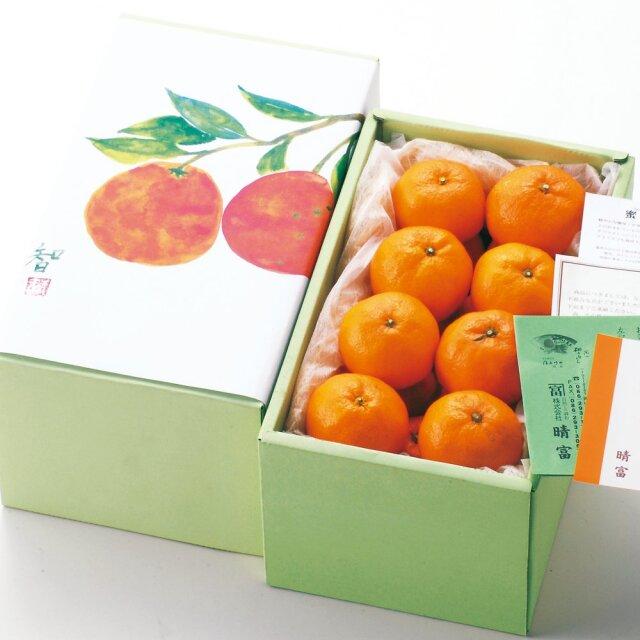 愛媛県産 温州みかん 1.5kg【晴富】