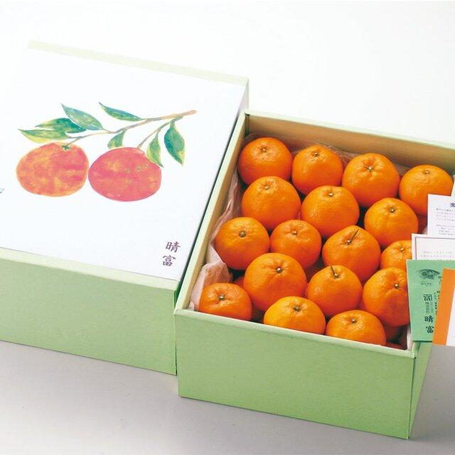 愛媛県産 温州みかん 3.5kg【晴富】