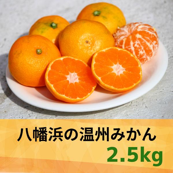 【愛媛県】八幡浜の温州みかん2.5kg 【産地直送・同梱不可】