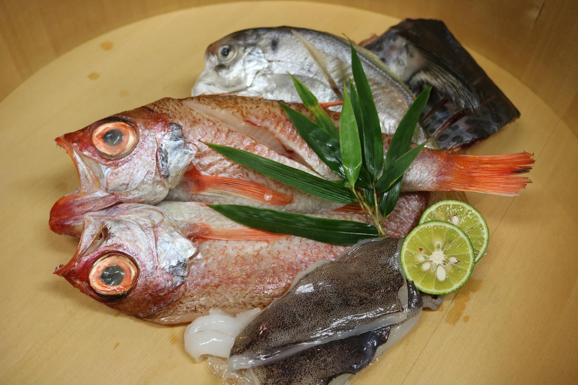 【徳島県】特選一夜干しセット 高級魚のどぐろ入り【産地直送・同梱不可】