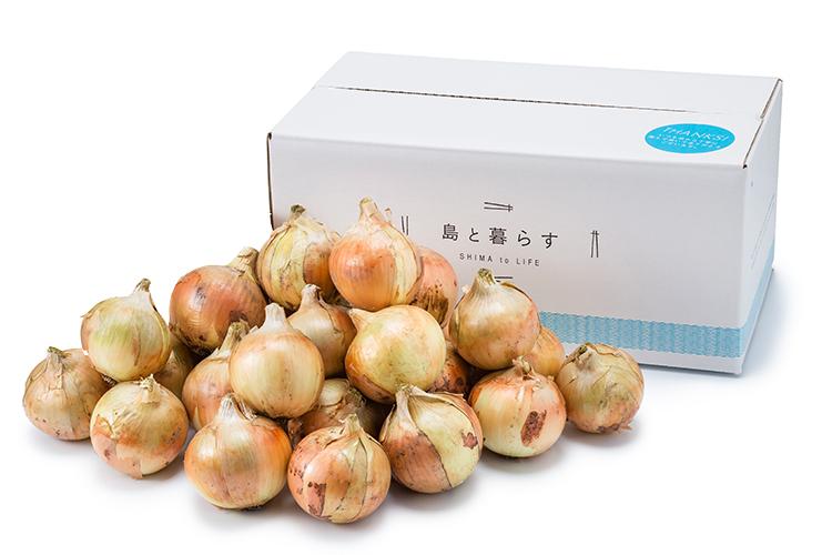 【中生(なかて)】 淡路島産玉ねぎ 7kg