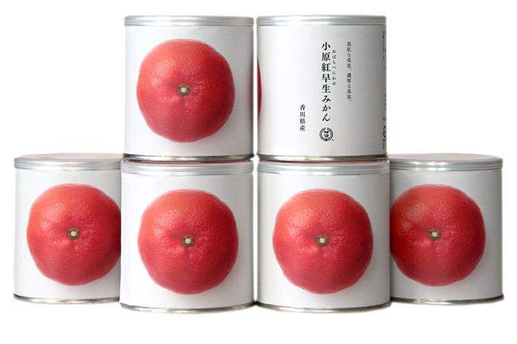 【香川県|缶詰】瀬戸芸ギフト6缶セット(小原紅みかん缶詰)【産地直送・同梱不可】