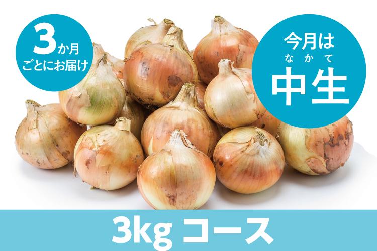 【島の玉ねぎ定期便】食べきりコース(3kg~4kg):3ヵ月に1回お届け