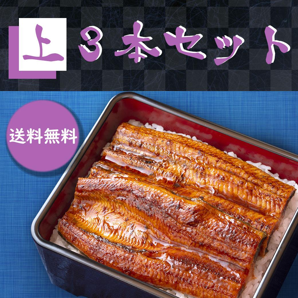 【兵庫県】【送料無料】よかわ錦うなぎ・上 (1尾 140g保証)×3セット