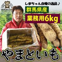 送料無料【訳あり】【島田ファーム産 やまといも6Kg(業務用)】クッキングレシピ付き♪