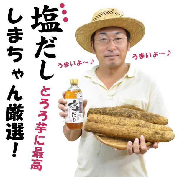 【島田ファーム産 やまといも 約1.5kgと茂蔵の塩だし1本 ギフトBOX】クッキングレシピ付き♪