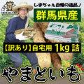 送料無料【訳あり】【島田ファーム産 やまといも1Kg(自宅用)】クッキングレシピ付き♪