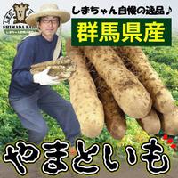 送料無料【島田ファーム産 やまといも4Kg(2kg詰め×2箱)ギフトBOX】クッキングレシピ付き♪ 群馬県産やまと芋 ヤマトイモ ヤマト芋