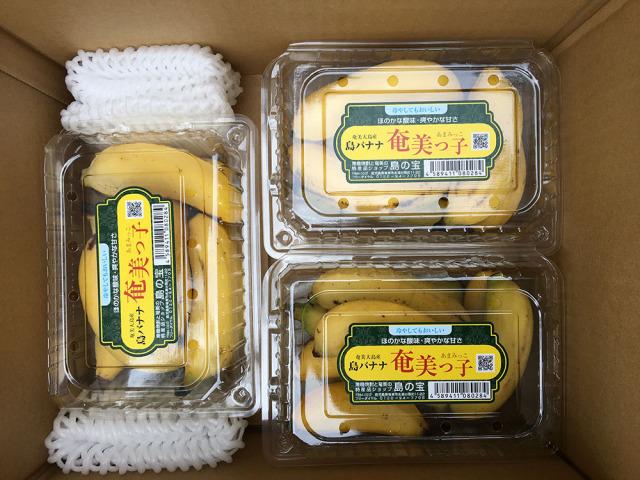 島バナナ奄美っ子500gパック3個(1.5kg)セット(送料込)