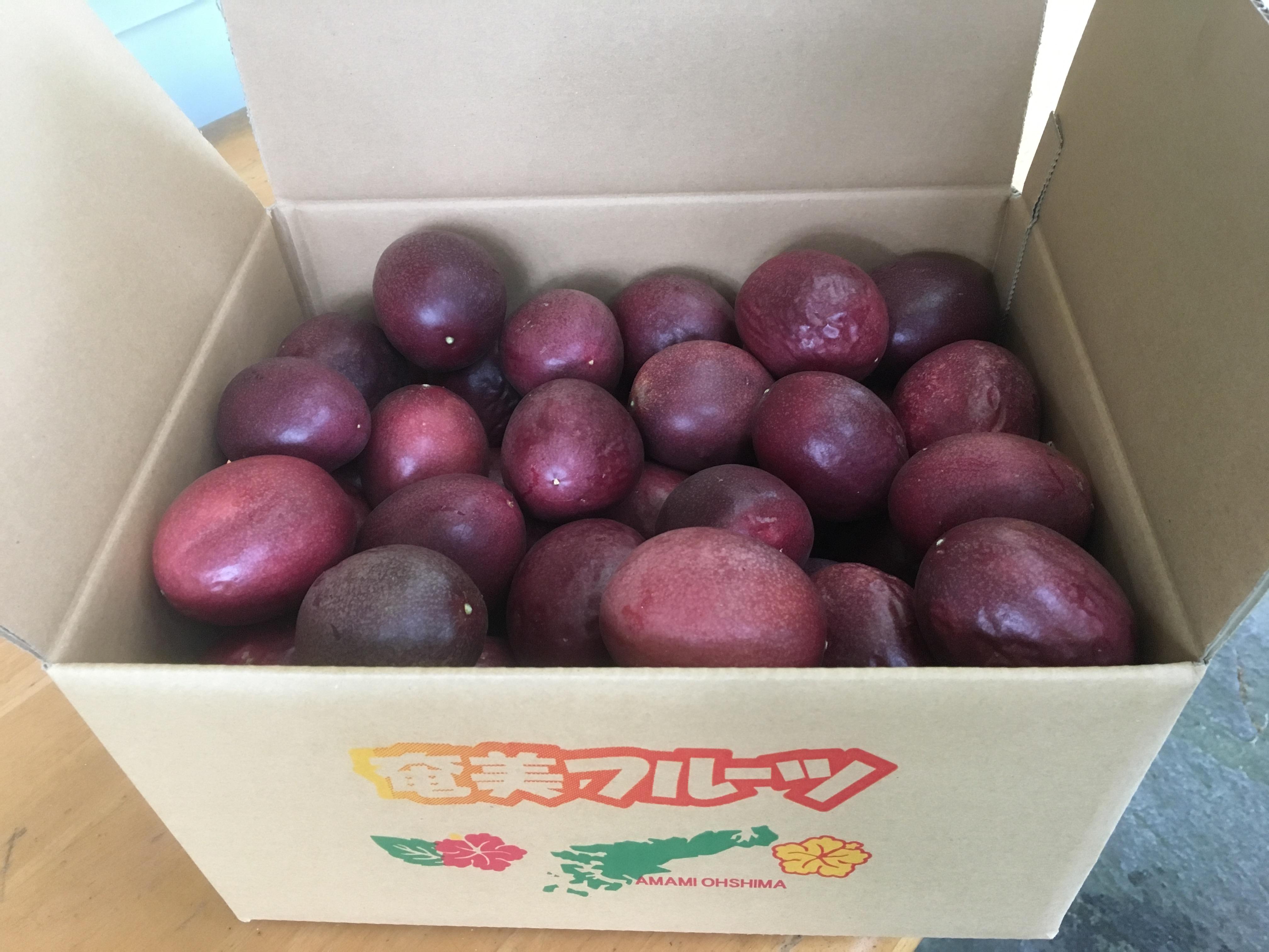 予約受付中!(お届は6月中旬頃より~)パッションフルーツ家庭用5kg