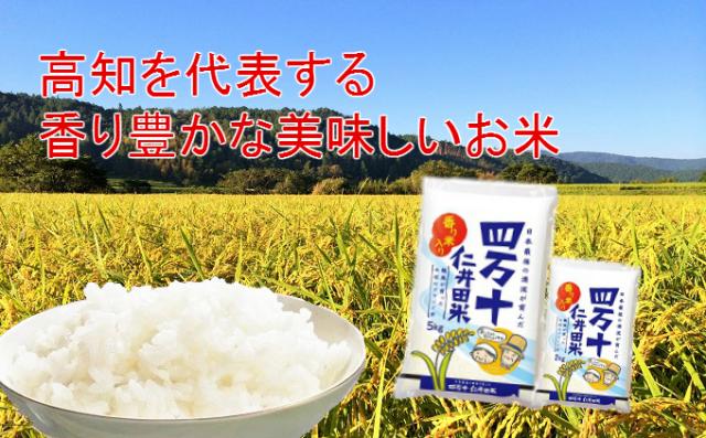 四万十仁井田米(5kg)