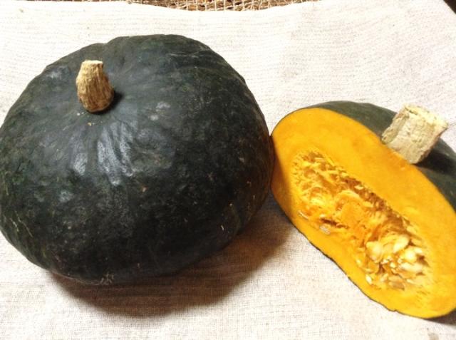 「Sibaenn (さいばえん) カボチャ (4kg/8kg)」 【毎週水曜日と土曜日に農園より発送】 ~テネモス理論・自然の法則を応用して栽培された信州産の野菜~