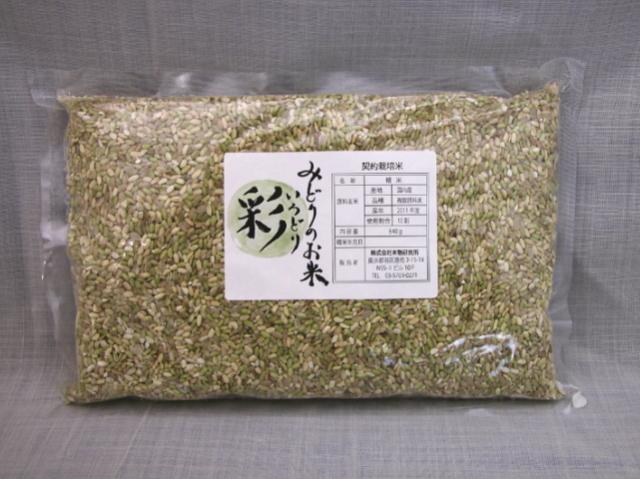 無農薬未成熟玄米 『みどりのお米 彩(いろどり)』 840g (2019年度米)