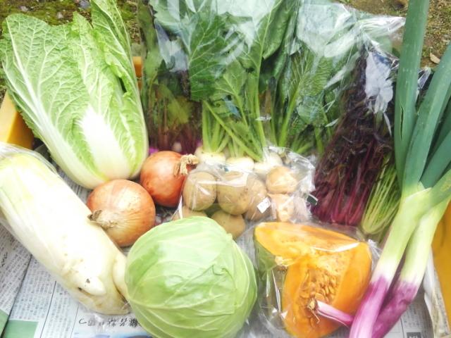 【定期購入】 「北信州 自然の恵み 野菜セット」 ~自然のしくみを応用してつくられた野菜・フルーツ・加工食品等の詰め合わせセット~