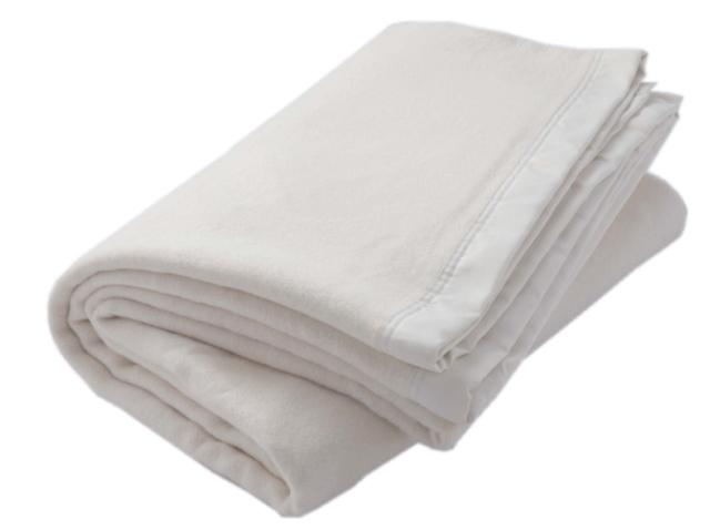 TAKEFU 竹布 毛布(シングル) 150cm×200cm ~癒しと生命力をもたらす天然素材~