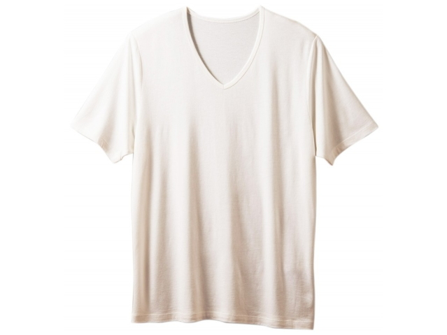 TAKEFU 竹布 VネックTシャツ Men's ~癒しと生命力をもたらす天然素材~