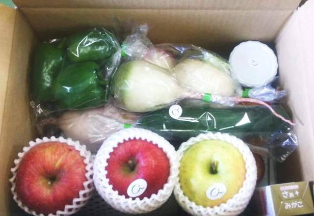 【期間・数量限定販売】 「信州健康倶楽部 玉手箱」 ~テネモス理論・自然の法則を応用してつくられた野菜・フルーツ・加工食品のお楽しみ詰め合わせセット~ ※11/27以降順次発送となります。