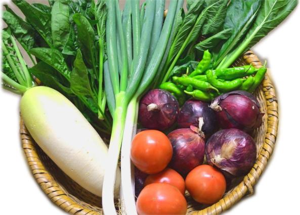 「北信州季節の野菜セット (7~10種類 / 2~4人分:およそ1週間で食べきれる量です)」 【毎週月曜日と木曜日に産地より発送】 ~北信州の農家さんが大切な家族のために作る農薬・化学肥料不使用のお野菜です♪~