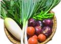 「北信州季節の野菜セット (7〜10種類 / 2〜4人分:およそ1週間で食べきれる量です)」 〜農家の皆さんが大切な家族のために作る農薬・化学肥料不使用のお野菜をお届け致します♪〜