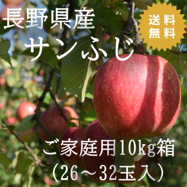 りんご サンふじ 長野県産りんご 10kg