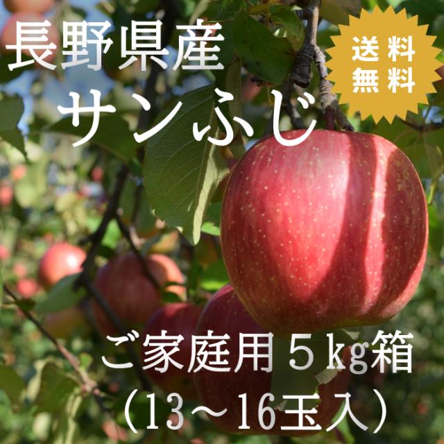 りんご サンふじ 長野県産りんご 5kg