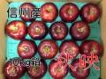 秋映,りんご,林檎,長野,信州,産直市場