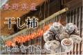 干し柿,長野県産