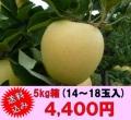 シナノゴールド,信州,長野,産直市場,りんご