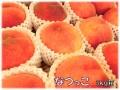 桃,なつっこ,長野県,甘い