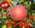 ご贈答用,信州長野県産,りんご,サンふじ