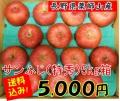サンふじ,薬師山,りんご,長野県,贈答用,産直市場ヤマサン