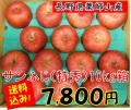 サンふじ,りんご,薬師山,長野県,蜜の入ったりんご,産直市場ヤマサン