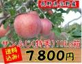 サンふじ,佐野,りんご,長野県,贈答用,産直市場ヤマサン