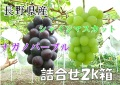【送料無料】皮ごと・種なし!長野県産シャインマスカット・ナガノパープル詰合せ2k箱(3〜4房入り)