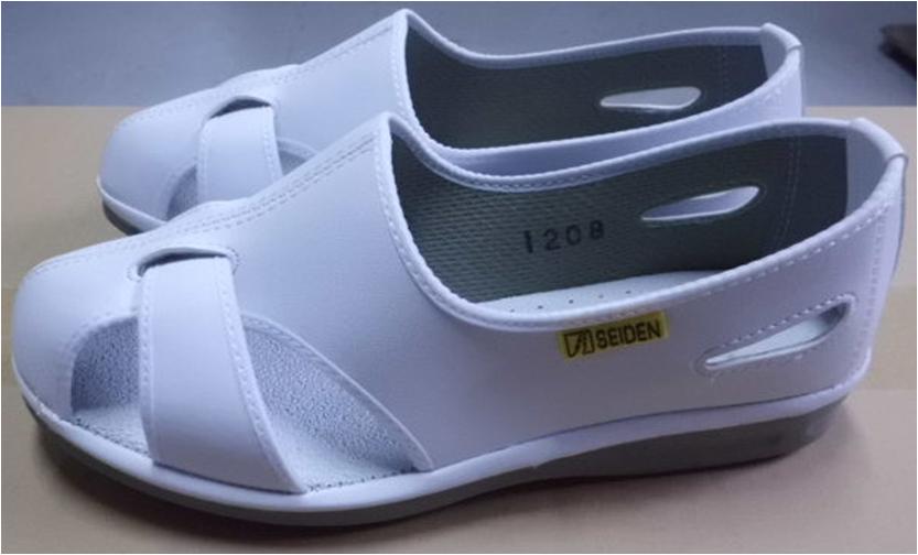 安全靴(エレパスクールN)