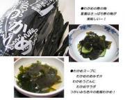 和歌山 由良産 乾燥わかめ (200g)