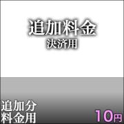 追加決済用10円