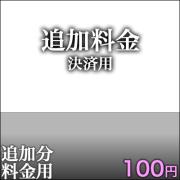 追加決済用100円