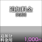 追加決済用1,000円