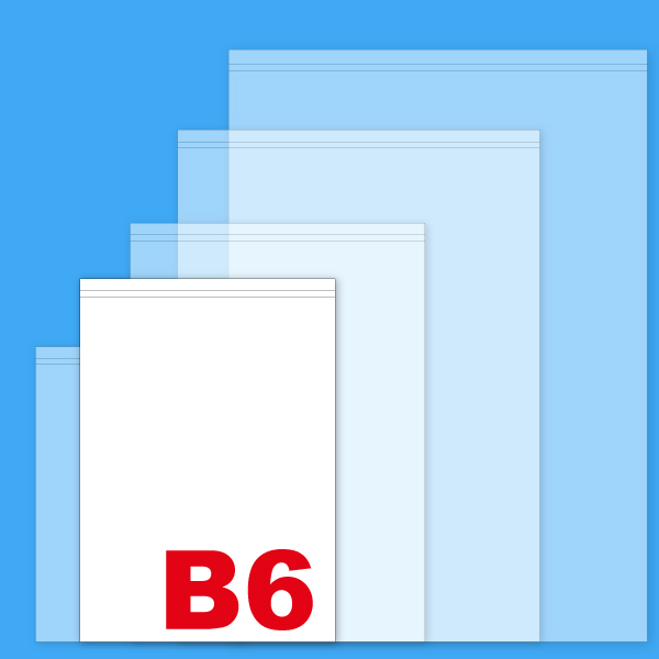 B6無地薬袋
