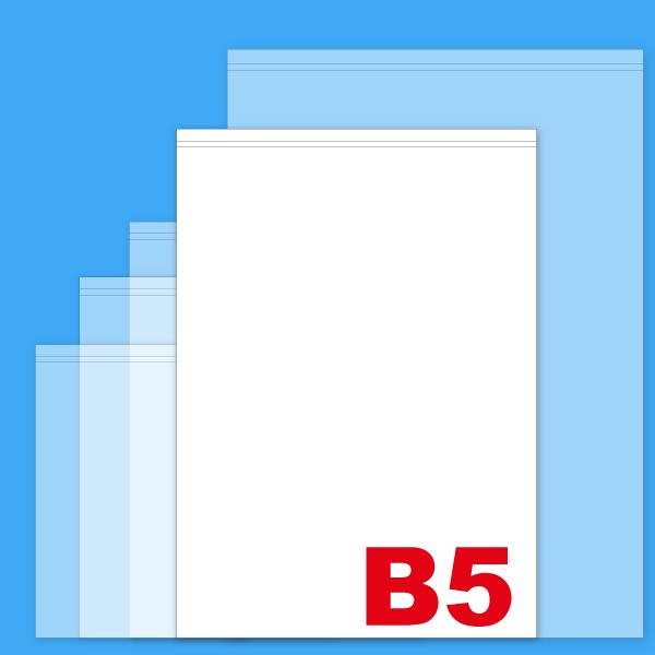 B5無地薬袋