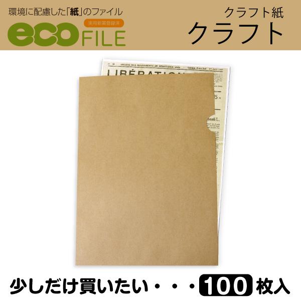 エコファイル(クラフト紙)