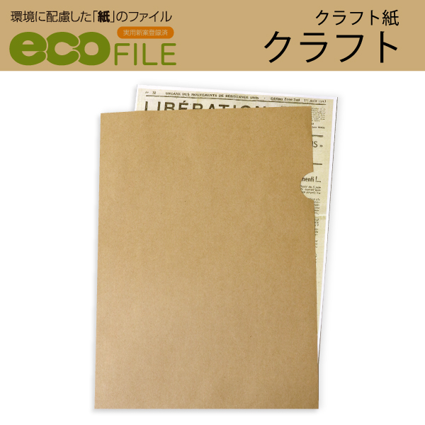 紙ファイルエコファイルクラフト
