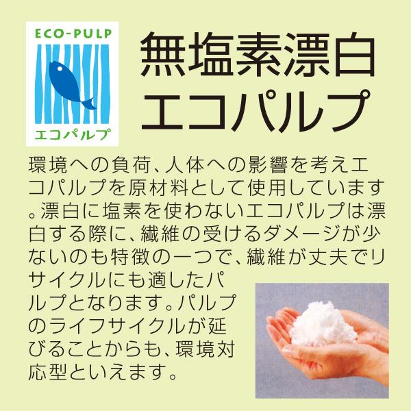 無塩素漂白エコパルプについて