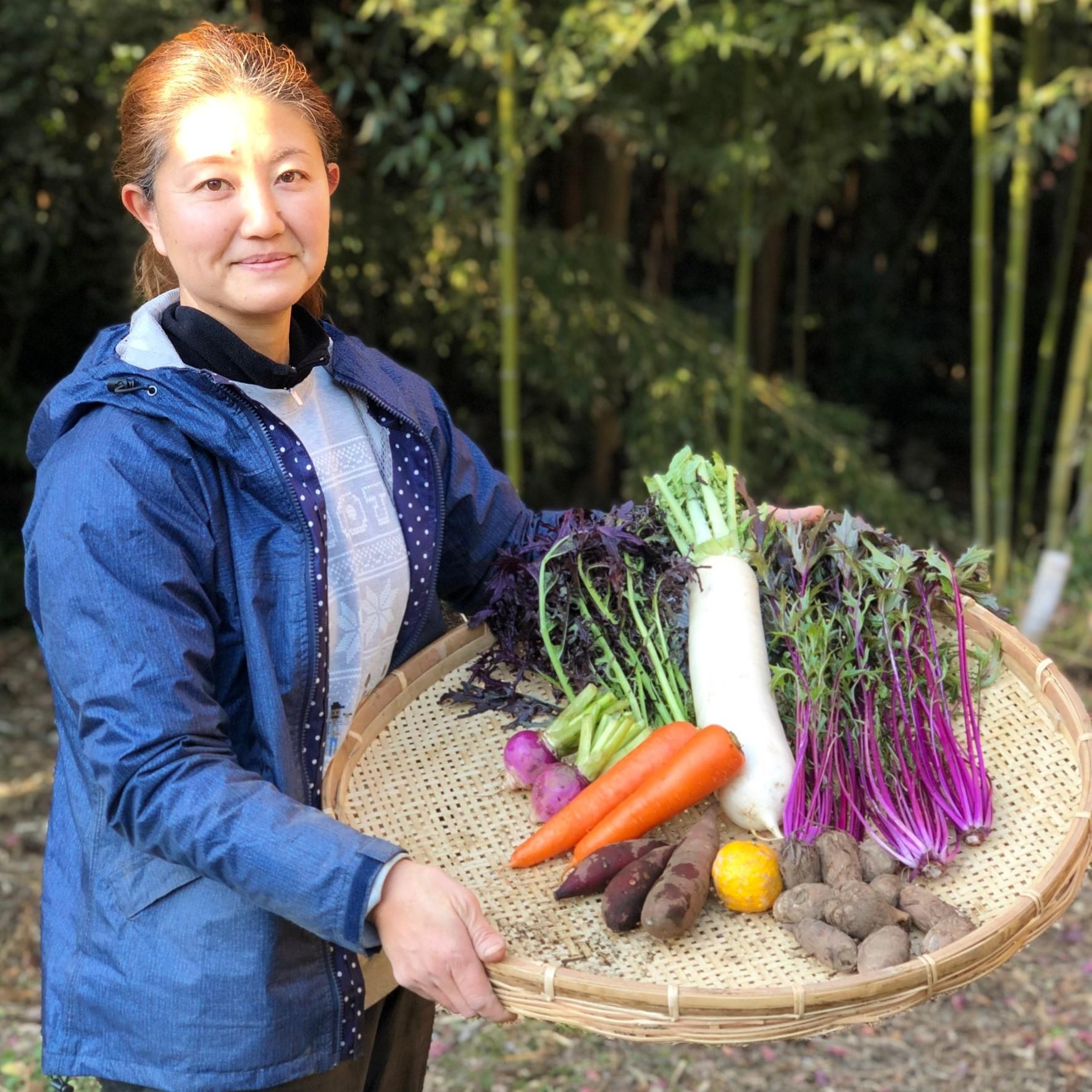 【無農薬・自然栽培】季節の産直野菜いろどりセット Sサイズ 6~8種類