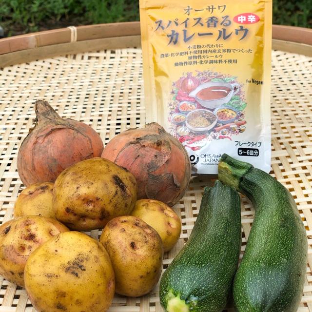 夏野菜とカレーセット