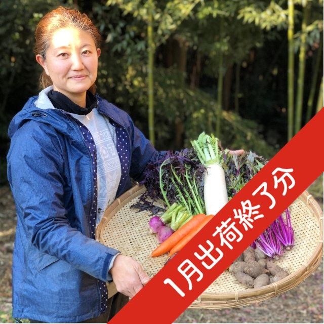 『出荷終了』【無農薬・自然栽培】季節の産直野菜いろどりセット Sサイズ 6~8種類